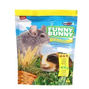 Funny-Bunny-chinchila-2011-02