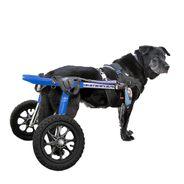 Cadeira-Walkin-Wheels-Acima-32kg-
