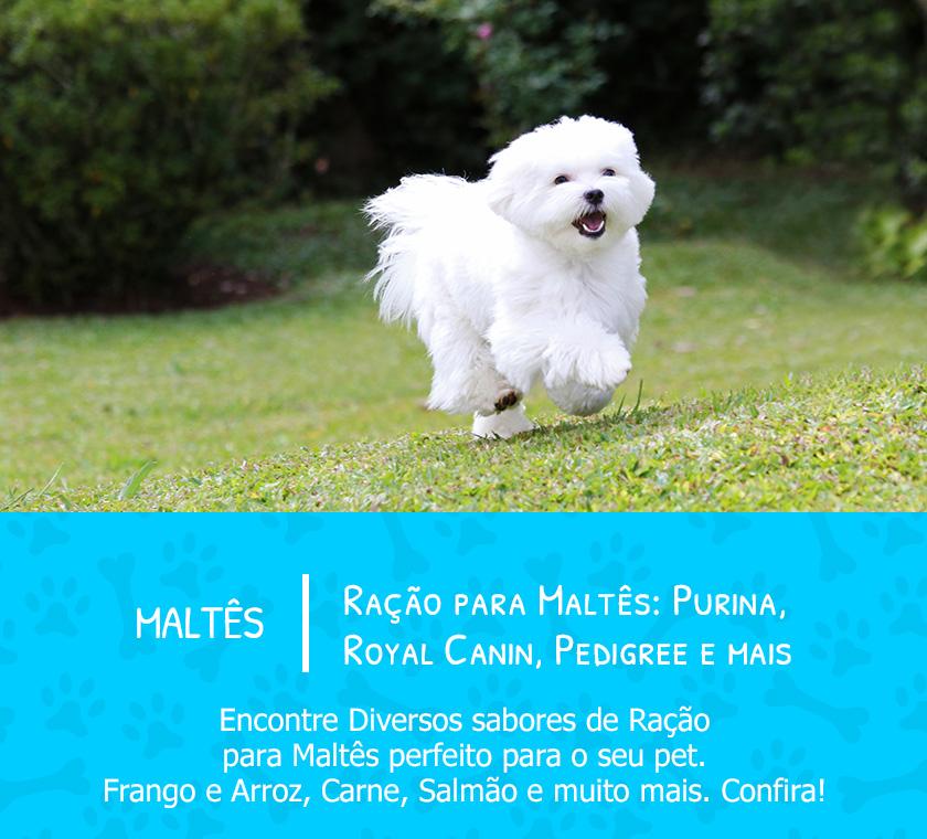 banner-raças-mobile