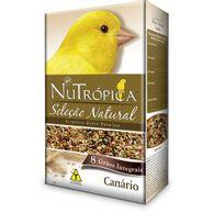 NUTOPICA-CANARIO-