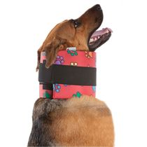 Colar-Cervical-Color-Pet-Med