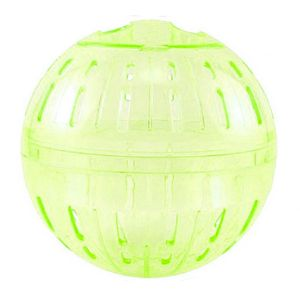 Globo-Play-Ball-Verde-Mr-Pet