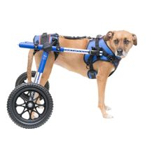 Cadeira-de-Rodas-Walkin--Wheels-Caes-de-9kg-a-31kg_