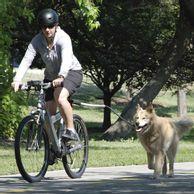 -Kit-para-Bicicletas-Cycleash-