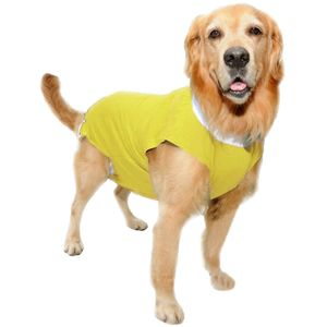 Roupa-Pos-Cirurgica-Amarela-Vestdog-Light