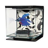 Kit-Aquario-para-Peixe-Betta-Selvagem-Marina-Hagen-2L