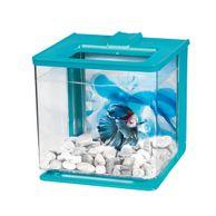 Kit-Aquario-para-Peixe-Betta-Azul-Marina-Hagen