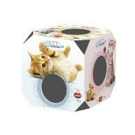 Cat-Box-Filhote-Furacao-Pet