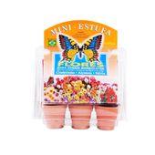 Mini-Estufa-Sementes-Flores-Petpira