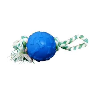 Bola-Ossinho-Azul