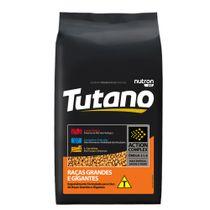 Racao-Tutano-Adulto-Racas-Grande-e-Gigantes