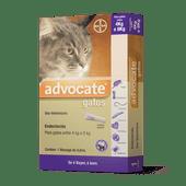 Advocate-Gatos-4kg-ate-8kg-Bayer