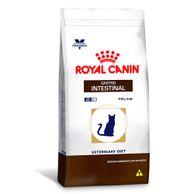 Racao-Royal-Canin-Gatos-Gastro-Intestinal