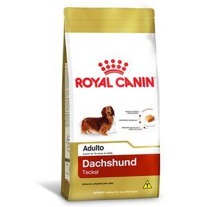 9-Racao-Royal-Canin-Dachshund