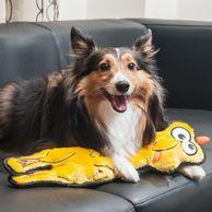 Brinquedo-Pelucia-Frango-Floppyz-Pet-Trends