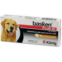 basken-plus_40