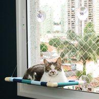 Cama-para-Gato-Listrada-Azul-Gatton