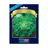 Chicoria-Escarola-Lisa