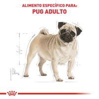Racao-Golden-Adulto-Special