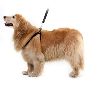 Peitoral para Cachorros Antipuxão - Preto