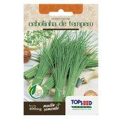 Semente Cebolinha de Tempero Topseed GardenTopseed Garden