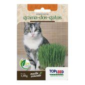 Semente Grama dos Gatos Topseed Garden